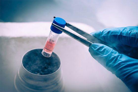 frozen_embryos-e1470095360744